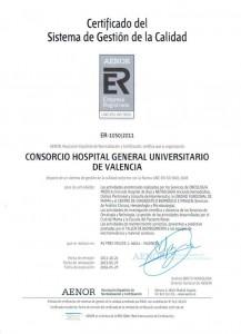ISO 9001 2008 Aenor