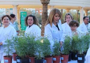 Foto plantas Diputacion